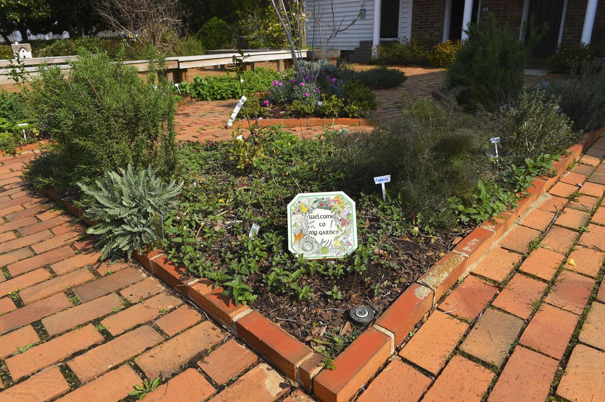 Herb relief: Old State Bank herb garden adds spice to the community ...
