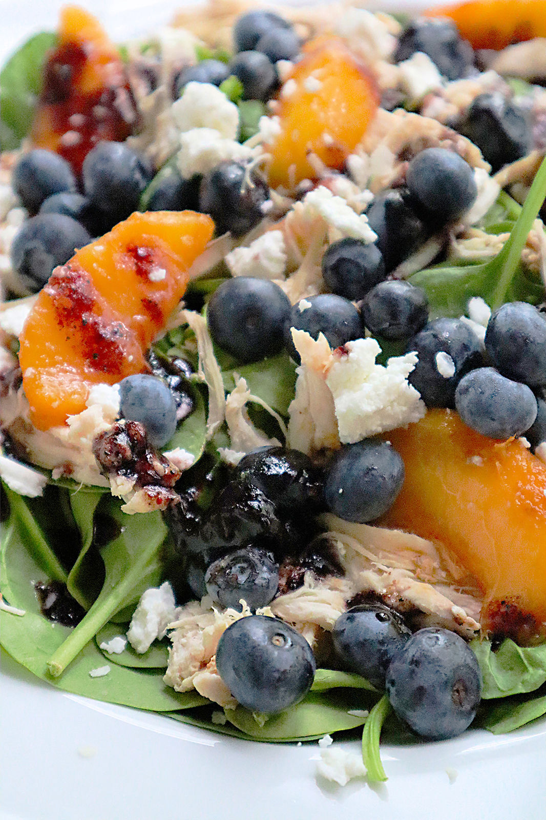 FOOD-BLUEBERRIES-RECIPES-3-PG