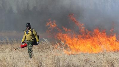 Delta Bison Range Controlled Burn