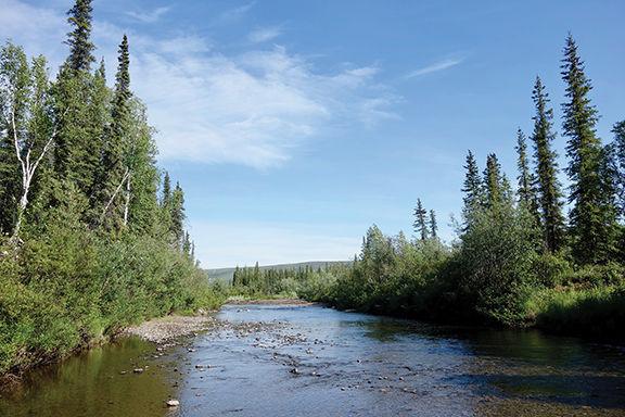 Alaska's cold spot, Prospect Creek