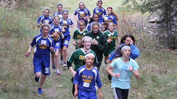 Delta schools host cross country this weekend