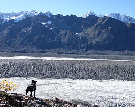 Canwell Glacier