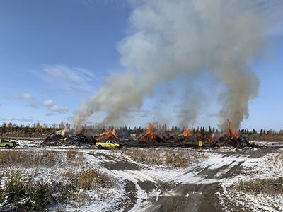 Forestry burns brush pile