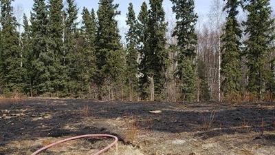 Burned yard