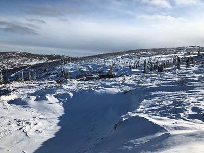 North Peak Tetlin Mine