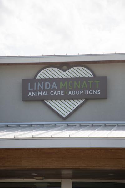 Denton Closes Animal Shelter Temporarily In Wake Of Virus Outbreak