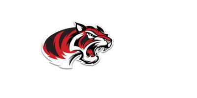 Braswell logo
