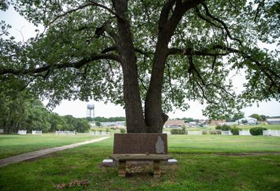 Bench at cemetery