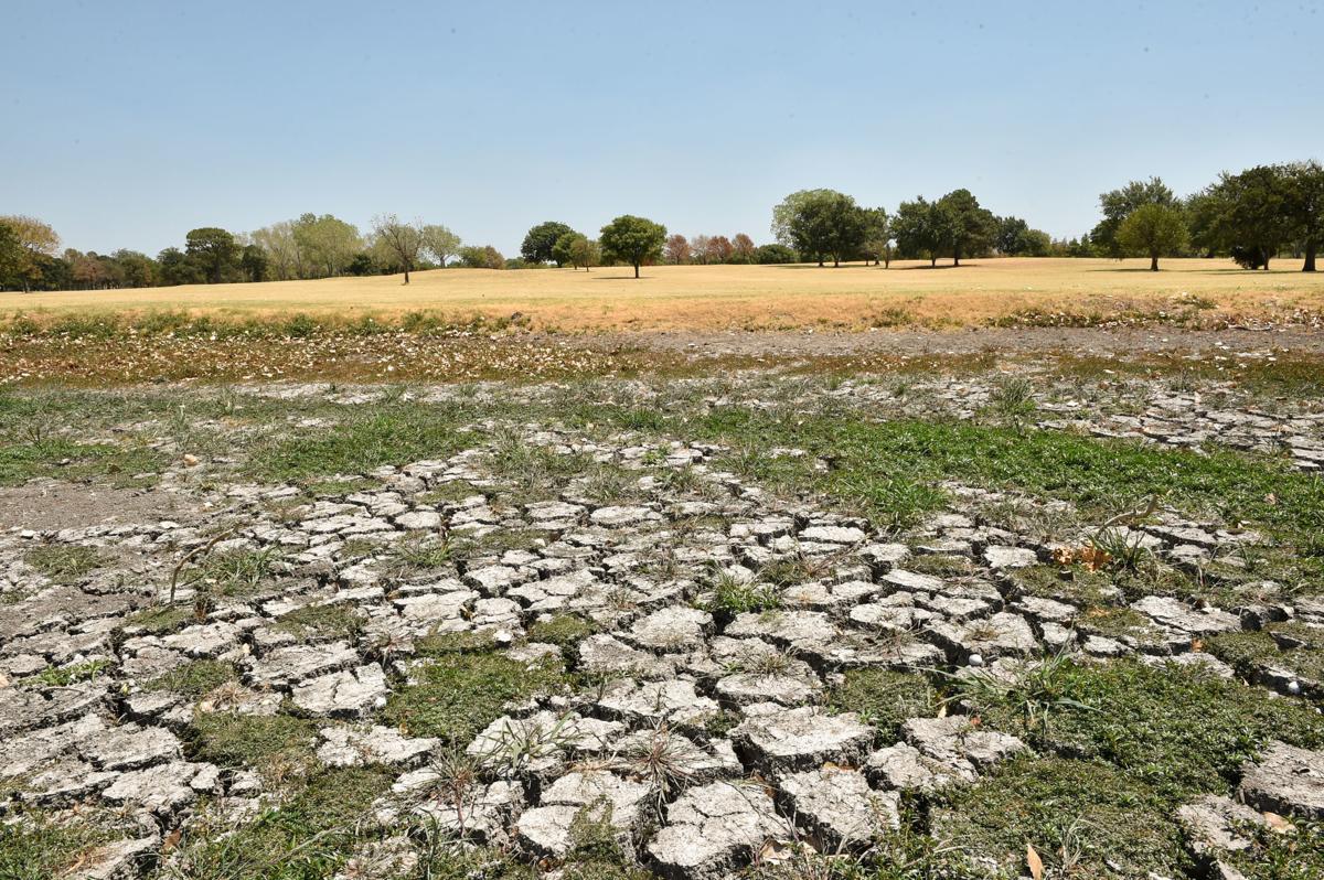 180803_drc_news_drought_11JW.JPG