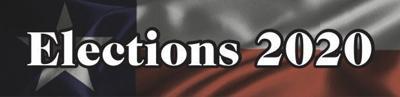 Elections 2020 logo