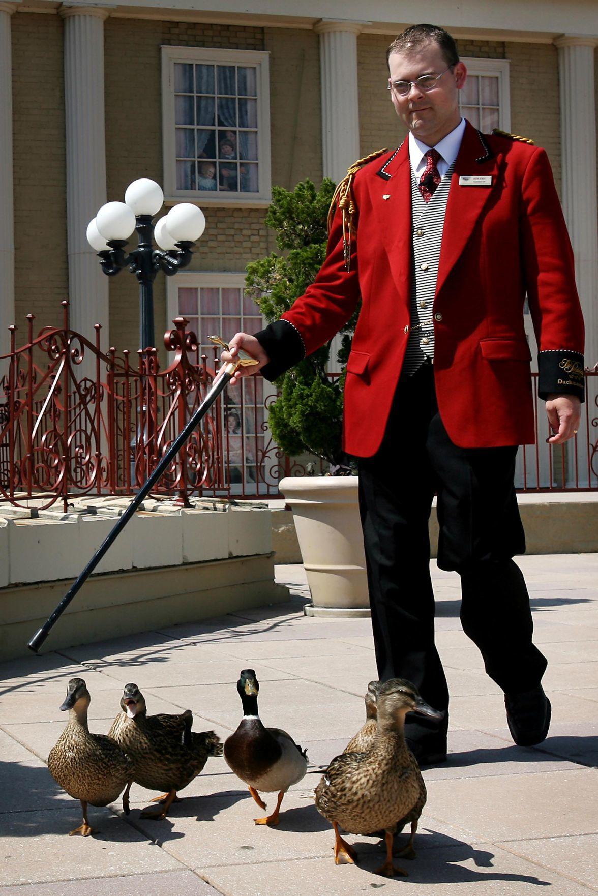 New Duckmaster