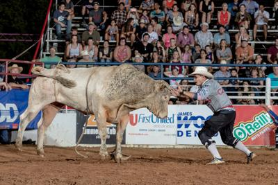 nt fair and rodeo protection bull fighting