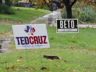 Political signs in yards