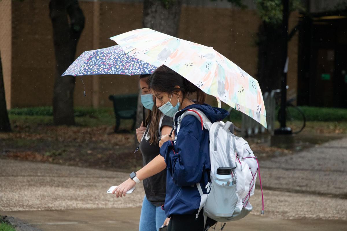 Campus umbrellas