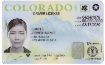 drivers license.png