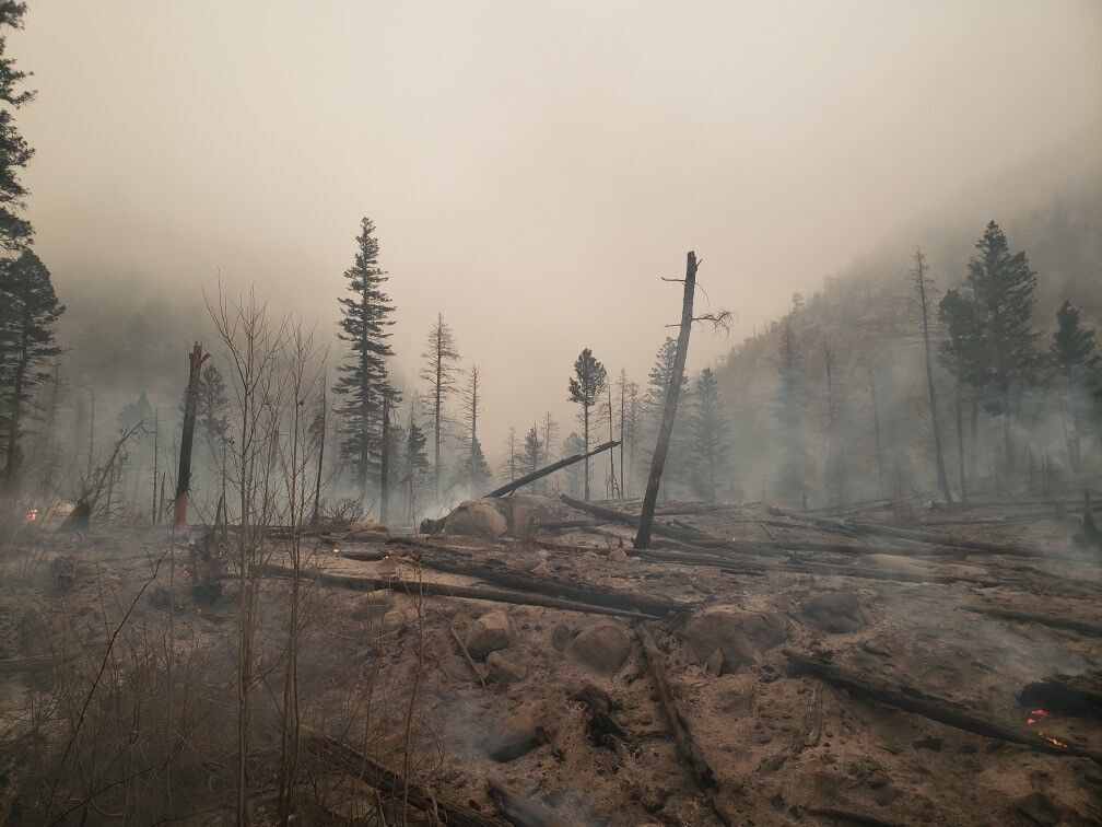 A look at some of the damage caused by the East Troublesome Fire. Photo Courtesy: Rocky Mountain National Park.