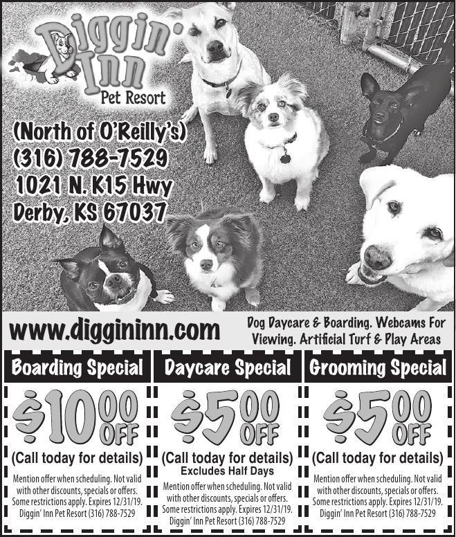 Diggin' Inn Pet Resort