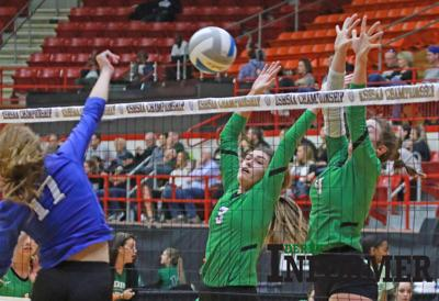 Derby volleyball state 2019 (Pitts, Connor)