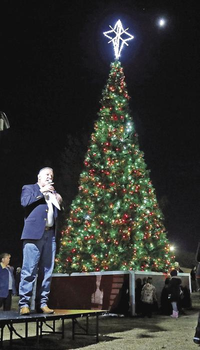 Tree Lighting 1_color.jpg