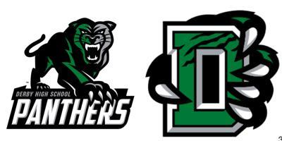 Derby High School logo