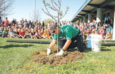 State forester: tree benefits for cities are many