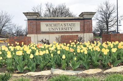 WSU sign_tulips_color.jpg
