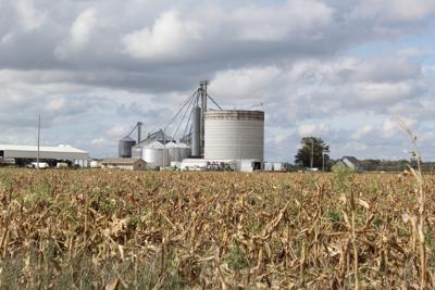 Man dies at grain storage facility in Salem township