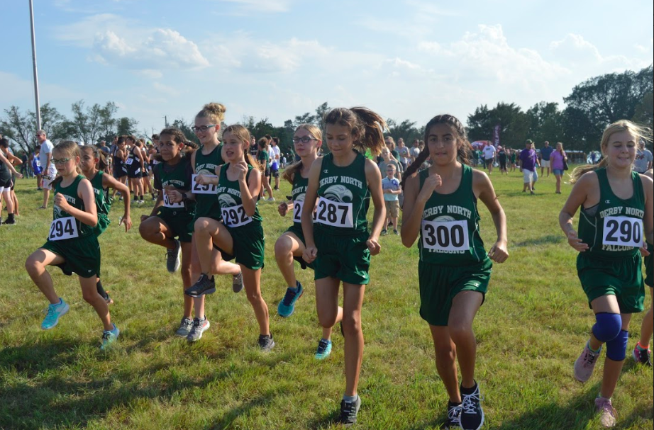 DNMS DMS cross country