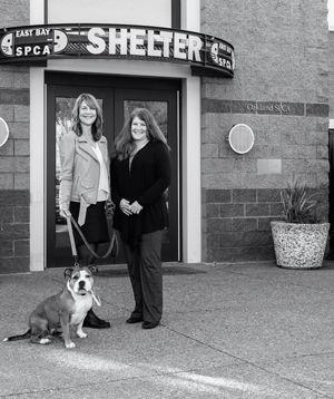 Allison Lindquist - East Bay SPCA