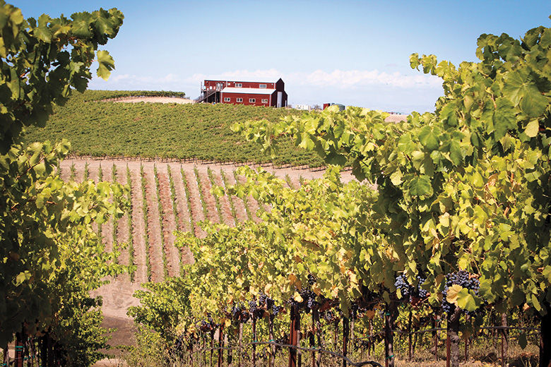 Ultimate Guide To Paso Robles
