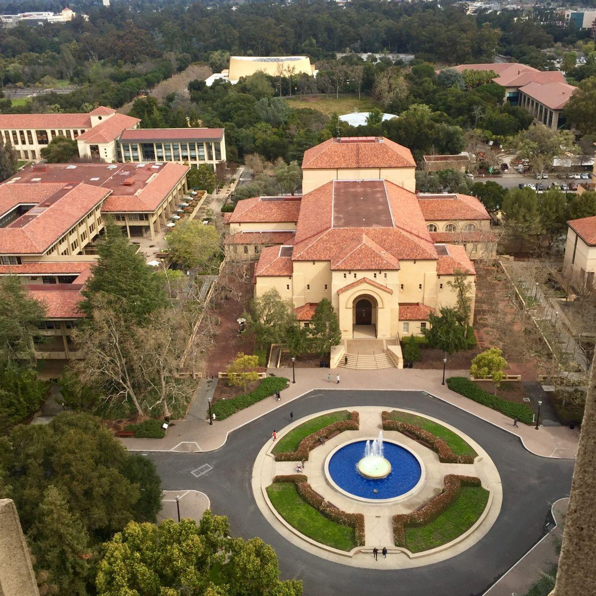A Palo Alto Weekend Pick-Me-Up