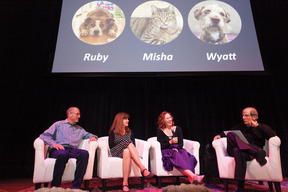 Best in Show: Stories From Beyond the Shelter 2019
