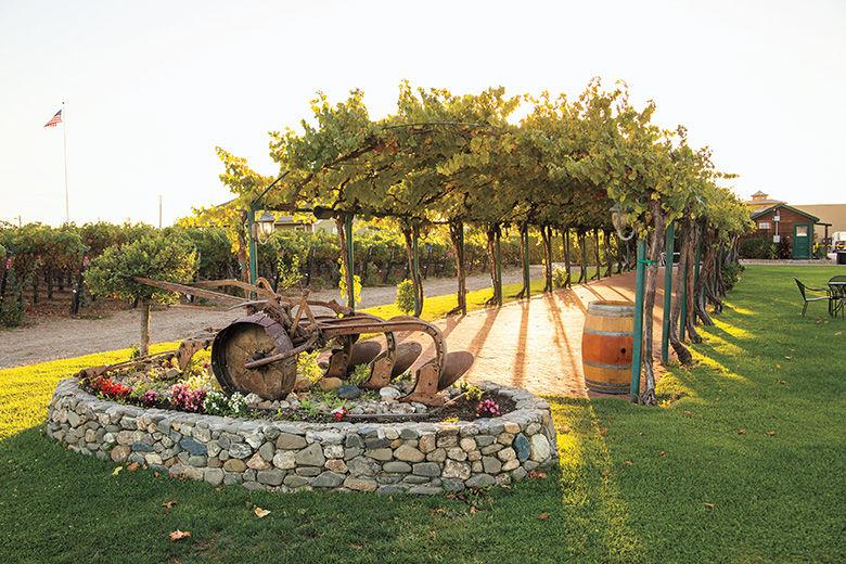 Explore Livermore Wine Country