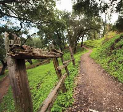 Hit the Trail in East Bay Parks