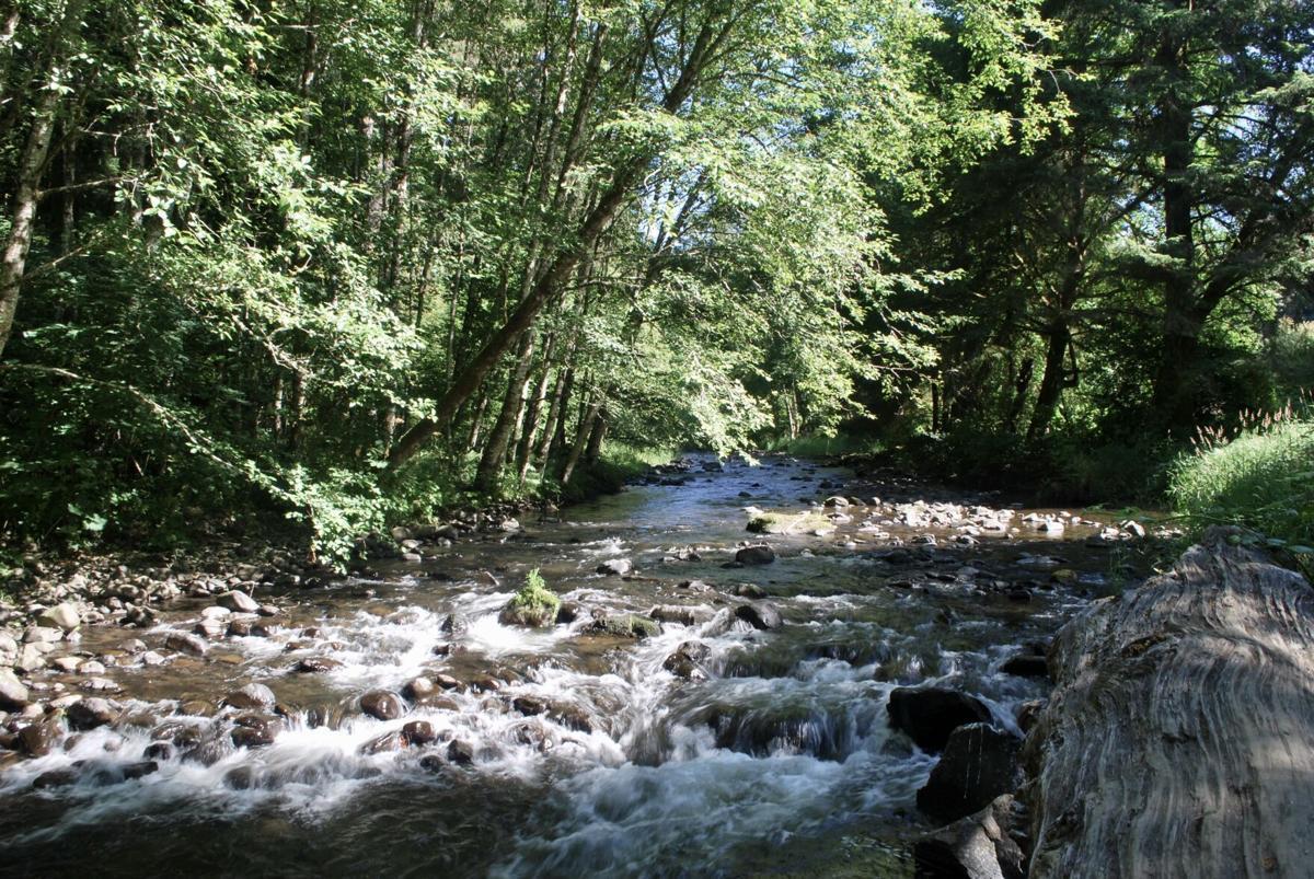 Big Creek Hatchery
