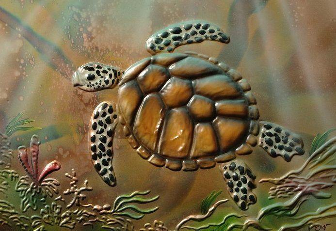'Turtle'
