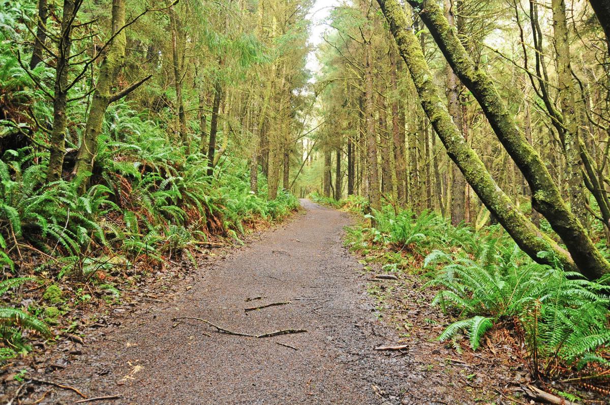 Clatsop Loop Trail