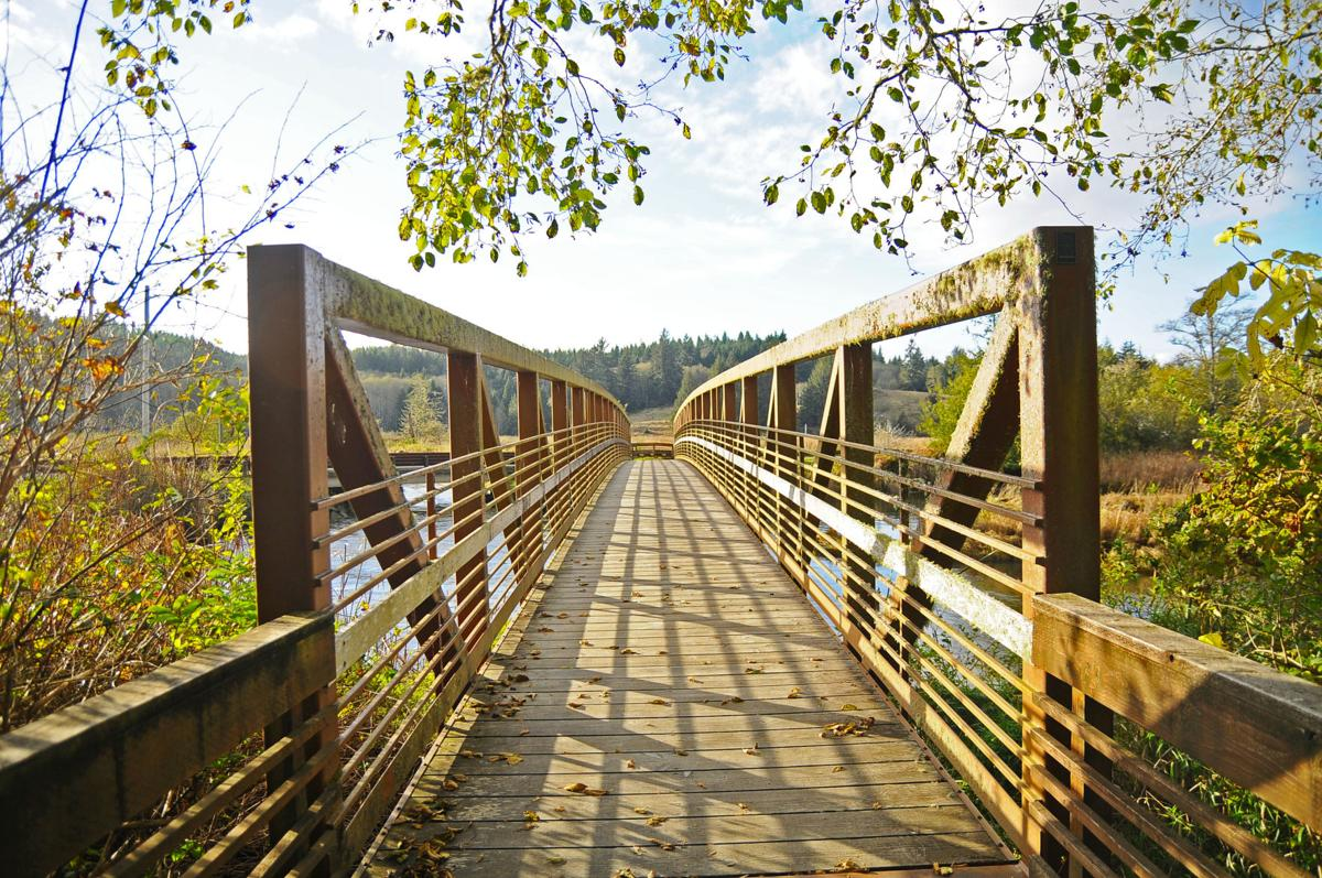 Netul Landing bridge
