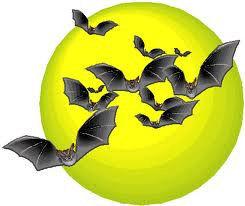 Got bats on the brain?