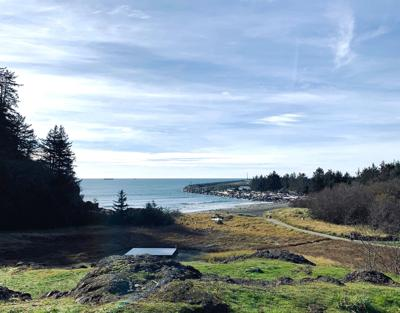 Cape Disappointment (copy)