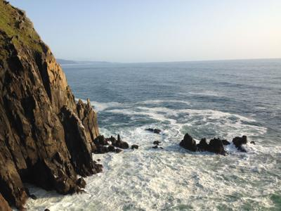 'World of Haystack Rock' presents marine reserve overview (copy)