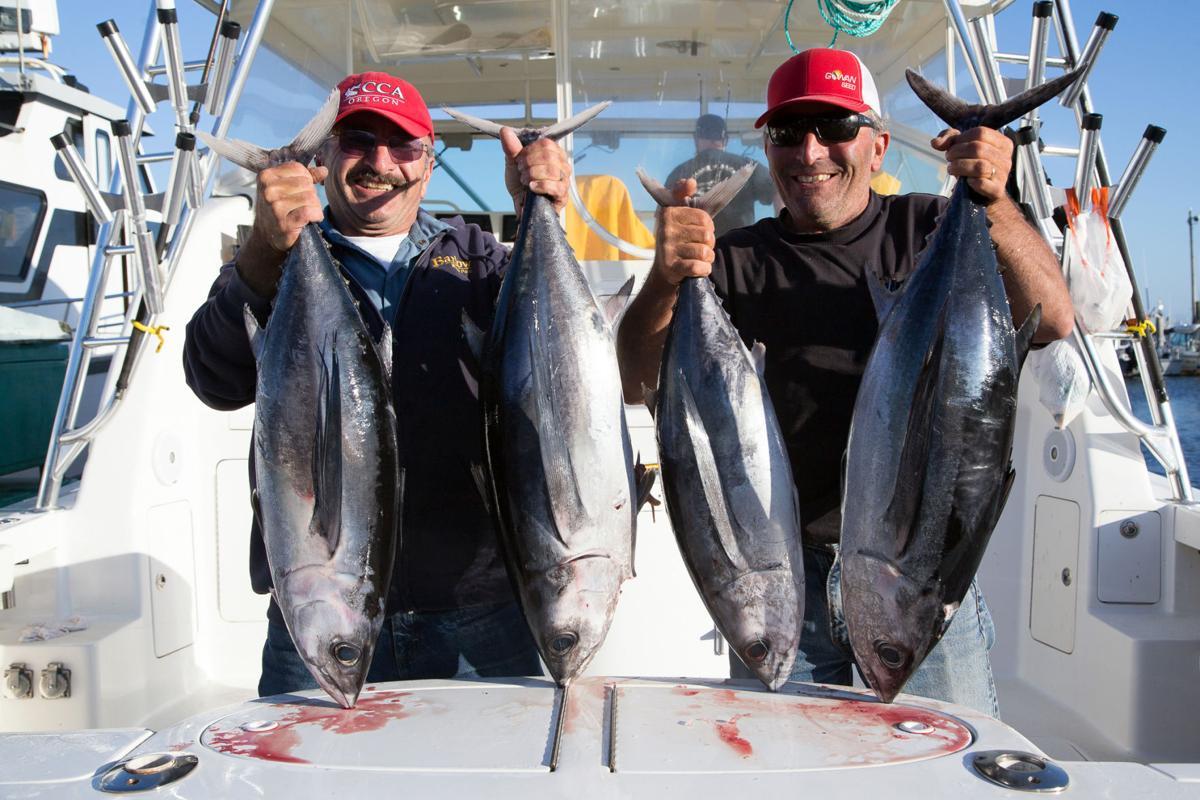 Albacore tuna is a popular summer fishery