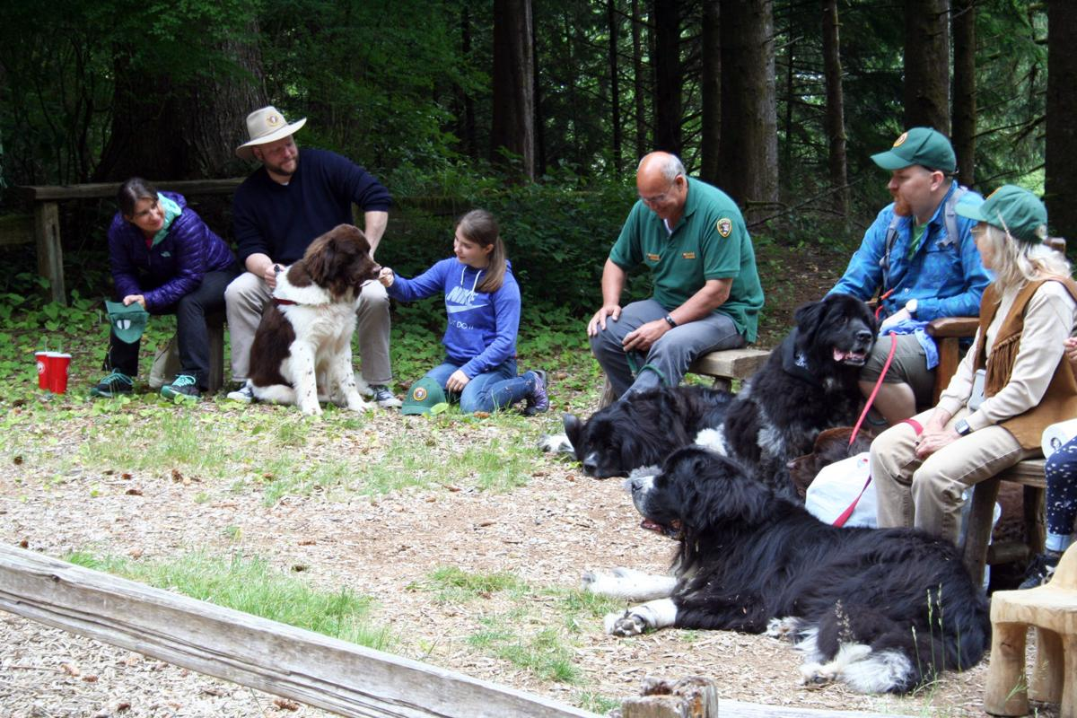 Dogs have their day at Fort Clatsop