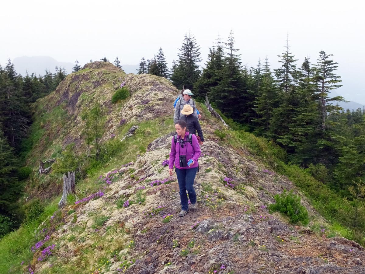 Katie Voelke hiking