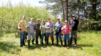 The broom is in bloom: must be Broom Buster Month