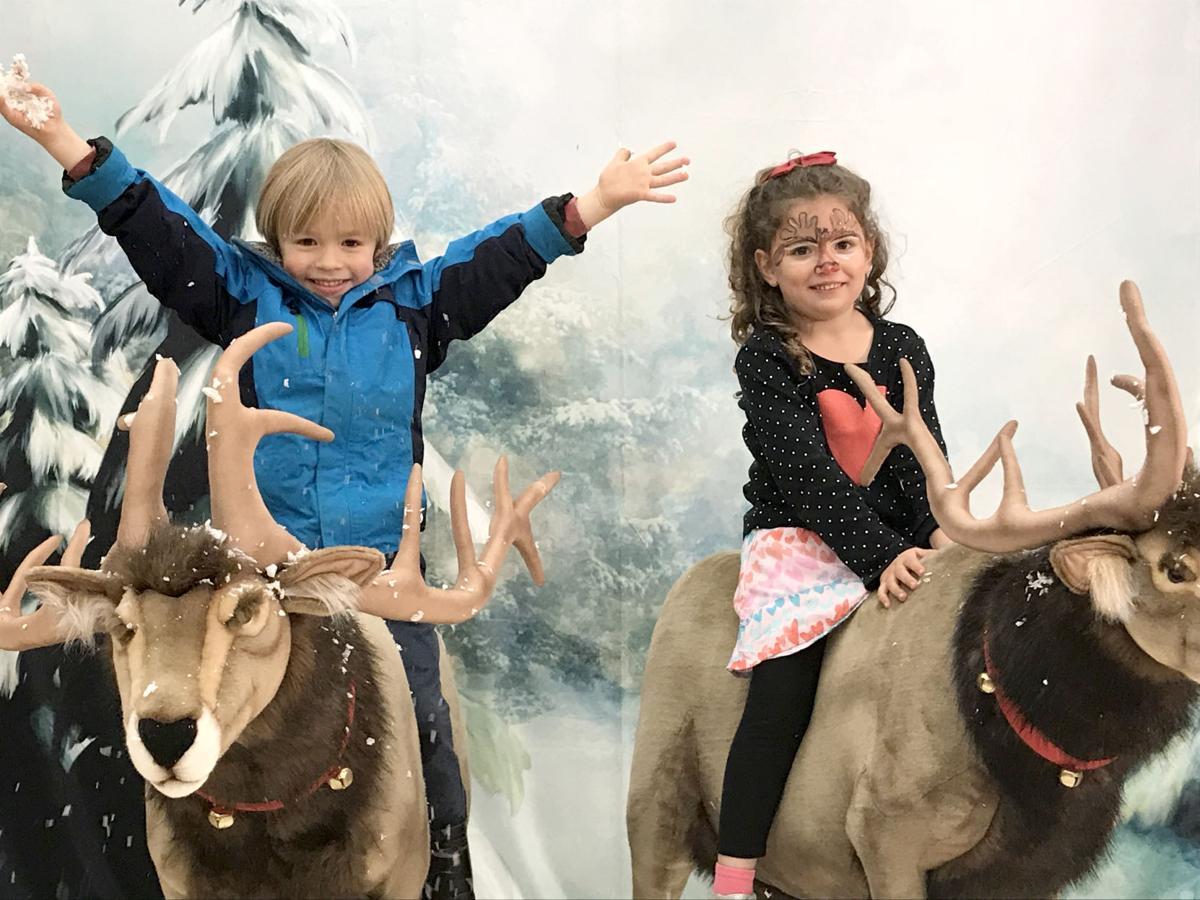 Reindeer room