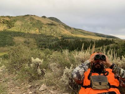 Good binoculars, proper technique help hunt along