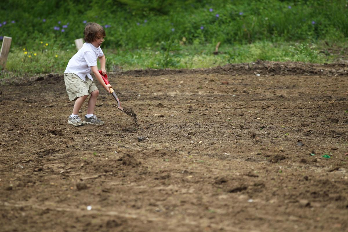 Volunteers tackle Park Hill Community garden project | News ...
