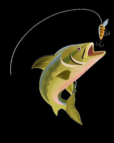 fishing2-01.png