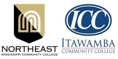 NEMMC and ICC logos